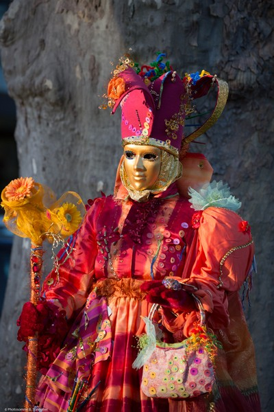 Bruno TONDELLIER - Carnaval Vénitien Annecy 2017 - 00010