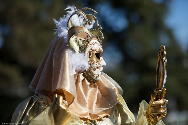 Bruno TONDELLIER - Carnaval Vénitien Annecy 2017 - 00023