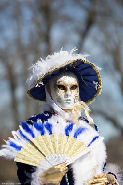 Bruno TONDELLIER - Carnaval Vénitien Annecy 2017 - 00034