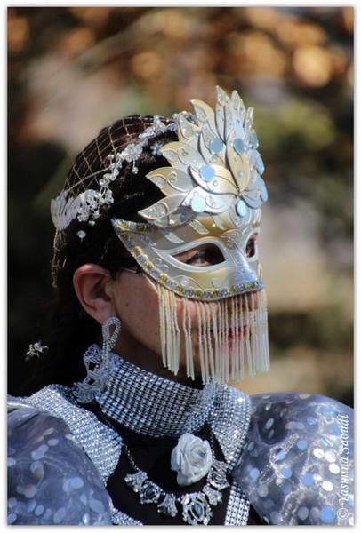 Carnaval Vénitien Annecy 2019 - 00007