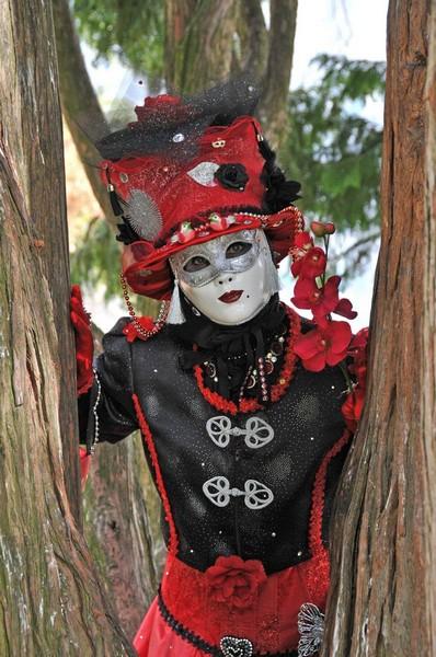 Daniel HEM - Carnaval Vénitien Annecy 2017 - 00018