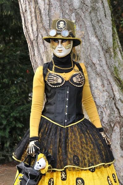 Daniel HEM - Carnaval Vénitien Annecy 2017 - 00020