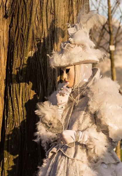 Djamal BENZEGHIBA - Carnaval Vénitien Annecy 2017 - 00017