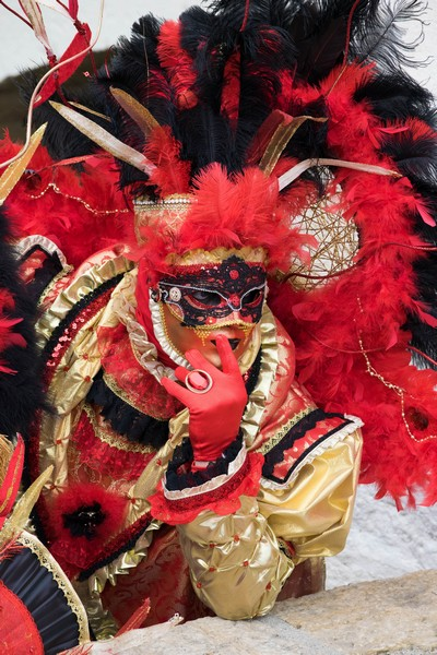 Joseph ESSEUL - Carnaval Vénitien Annecy 2017 - 00016