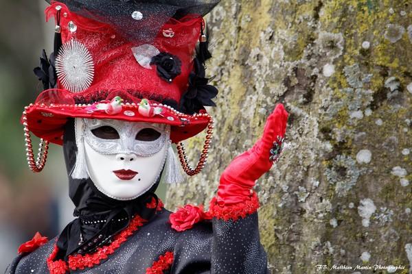 Matthieu MARTIN - Carnaval Vénitien Annecy 2017 - 00005