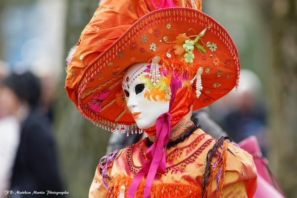 Matthieu MARTIN - Carnaval Vénitien Annecy 2017 - 00015