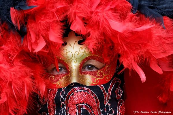 Matthieu MARTIN - Carnaval Vénitien Annecy 2017 - 00024