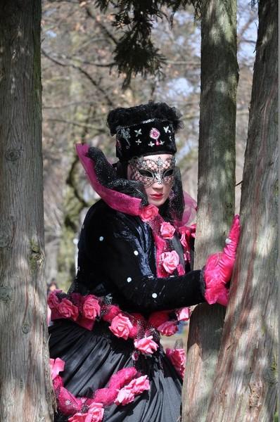 Michel LEFFONDRE - Carnaval Vénitien Annecy 2017 - 00013