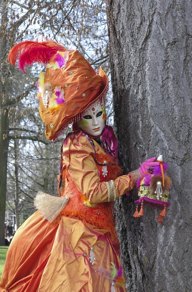 Michel RAYOT - Carnaval Vénitien Annecy 2017 - 00016
