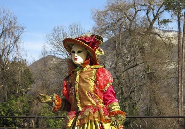 Michel RAYOT - Carnaval Vénitien Annecy 2017 - 00026