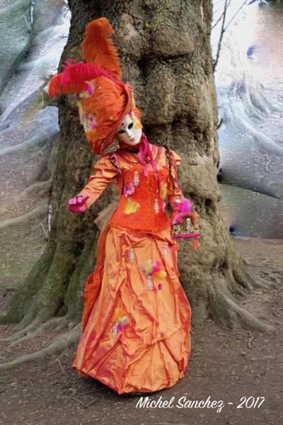 Michel SANCHEZ - Carnaval Vénitien Annecy 2017 - 00046
