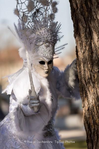 Pascal DECHAMBRE - Carnaval Vénitien Annecy 2017 - 00011