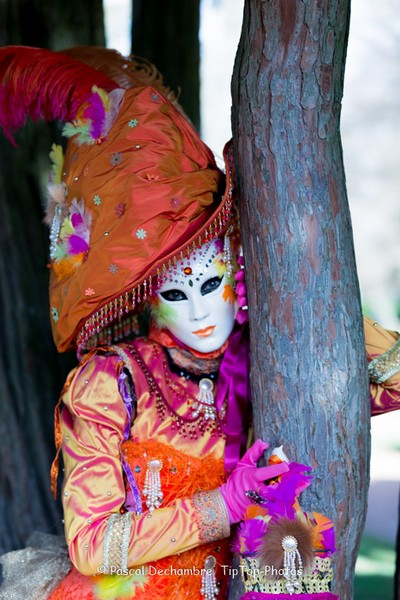 Pascal DECHAMBRE - Carnaval Vénitien Annecy 2017 - 00036