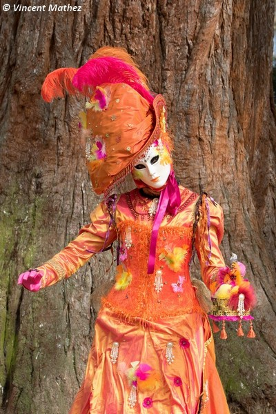 Vincent MATHEZ - Carnaval Vénitien Annecy 2017 - 00032
